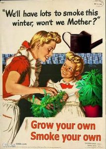 We-Will-Have-Lots-To-Smoke-This-Winter-Funny-Vintage-Meme